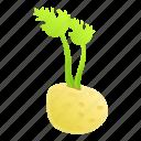 celery, food, retro, vegetable