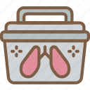 care, charity, donation, give, love, lung icon