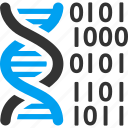 binary code, dna structure, genetic biology, genetic engineering, genetics, genome chain, spiral molecule icon