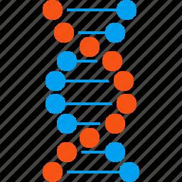 dna structure, genetic biology, genetic engineering, genetics, genome chain, molecule, spiral molecule icon