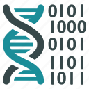 code, dna structure, genetic engineering, genetics, genome chain, science, spiral molecule icon