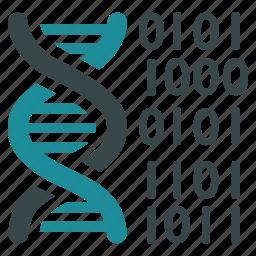 code, dna structure, genetic engineering, genetics, genome chain, science, spiral molecule icon