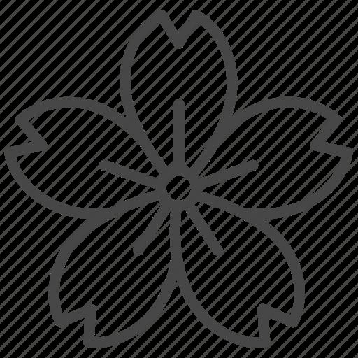 cherry blossom, flower, japan, leaf, leaves, sakura, spring icon