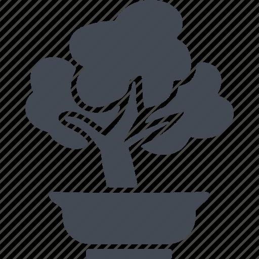 china, ecology, nature, tree icon