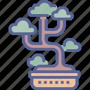 bonsai, garden, japanese, tree icon