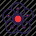 blossom, flower, plum, spring icon