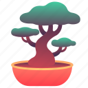 chinese, tree, japanese, plant, bonsai