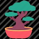 bonsai, chinese, japanese, plant, tree icon