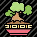 bonsai, decoration, garden, nature, plant