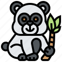 animal, bear, endangered, panda, wildlife