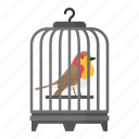 bird, cage, pet, lifestyle, parrot, traditional