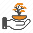 bonsai, chinese, new, plant, tree, year icon