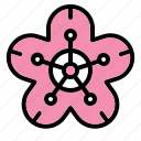 blossom, chinese, flower, new year icon, plum icon
