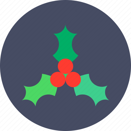 berries, berry, christmas, new year icon
