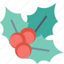 holly, decoration, christmas, ilex, leaves, xmas, berry icon