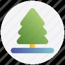 christmas, pine, tree, xmas