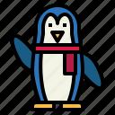animals, penguin, wildlife, zoo