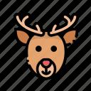 animal, christmas, deer, horn