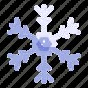 snow, snowflake, climate, forecast, winter icon