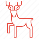 animal, christmas, deer, reindeer icon