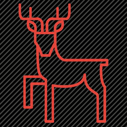 animal, christmas, deer, reindeer icon