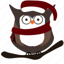 bird, christmas, owl icon