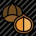 christmas, food, chestnut, macadamia, healthy icon