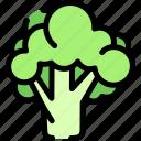 brocolli, fresh, green, vegetable icon