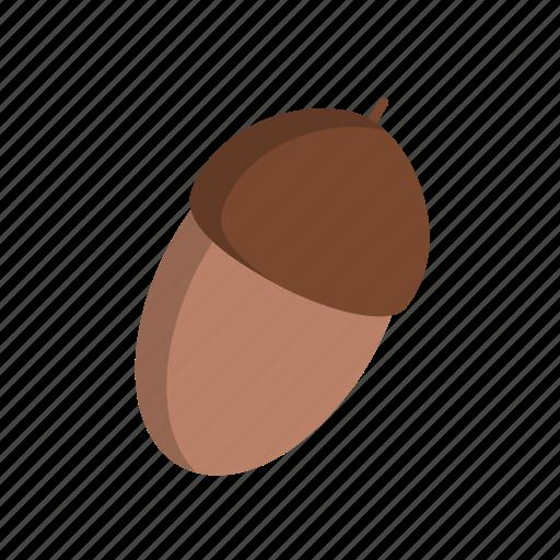 acorn, decoration icon