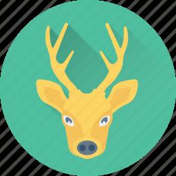 animal, deer, elk, reindeer, rudolf icon