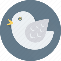 bird, dove, fly, peace, pigeon icon