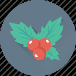 christmas, decorations, leaves, mistletoe, xmas icon