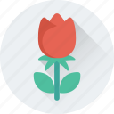 floral, flower, rose, rose bud, spring icon