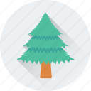 christmas tree, fir tree, nature, pine tree, tree icon