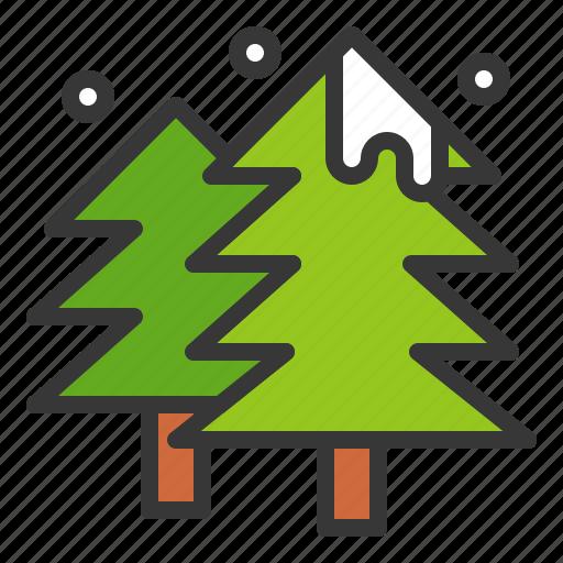 christmas, pine, tree, winter, xmas icon