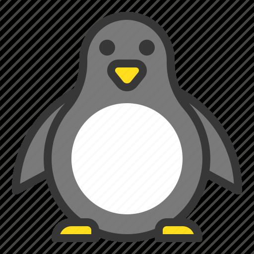 animal, bird, christmas, penguin, xmas icon