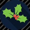 berry, christmas, december, decoration, holiday, holly, mistletoe icon