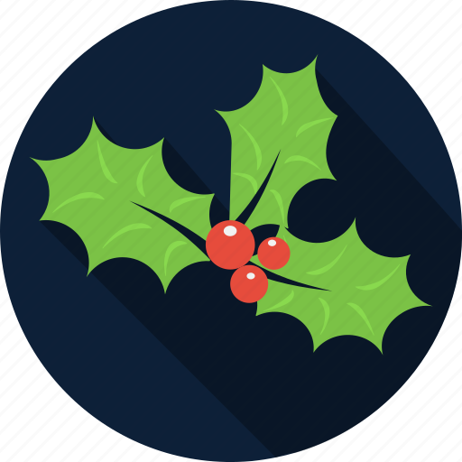berry, christmas, december, decoration, holiday, holly, mistletoe icon
