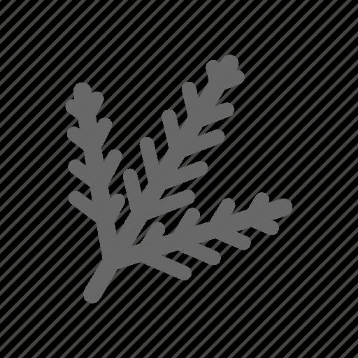 christmas, decorative57, greeting, line, season, tree icon