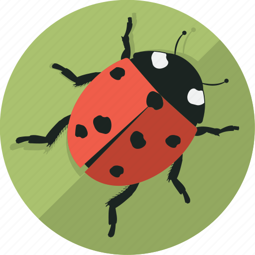 green, insect, ladybug, leaf icon