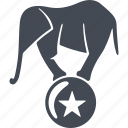 animal, ball, circus, elephant, trained elephants icon