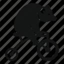 adventure, bear, bicycle, bike, circus, cute, wild icon