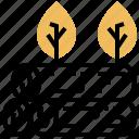 deforestation, forestry, harvest, logging, timer icon