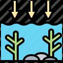 acidification, contaminate, coral, destruction, ocean icon