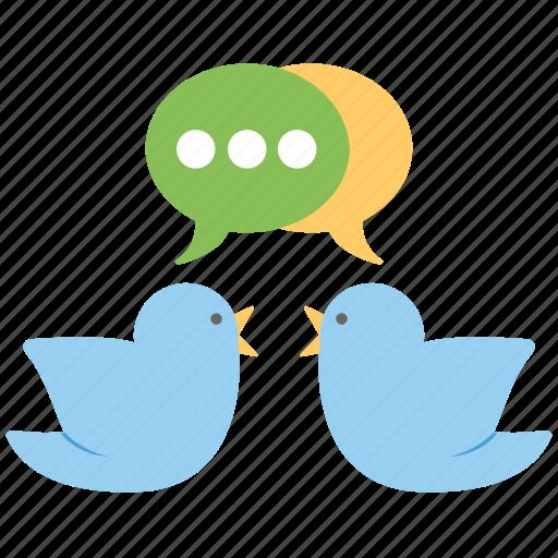 bird chat, chatting, social media, social network, tweets icon
