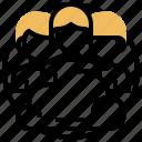 admin, member, profile, team, user
