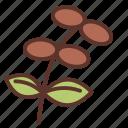 caffeine, coffee, coffee bean, espresso, leaf icon