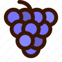 blackberry, food, fruit, grapes icon