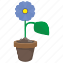 blue, bud, flower, grow, plant icon
