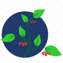 branch, green, leaves, plant, rowan icon